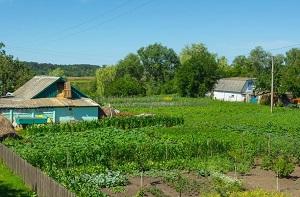 Дачная амнистия как оформить дом в садоводстве