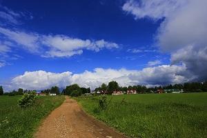 Земли сельскохозяйственного назначения виды разрешенного использования