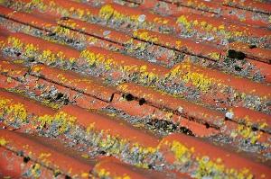 течет крыша в многоквартирном доме что делать