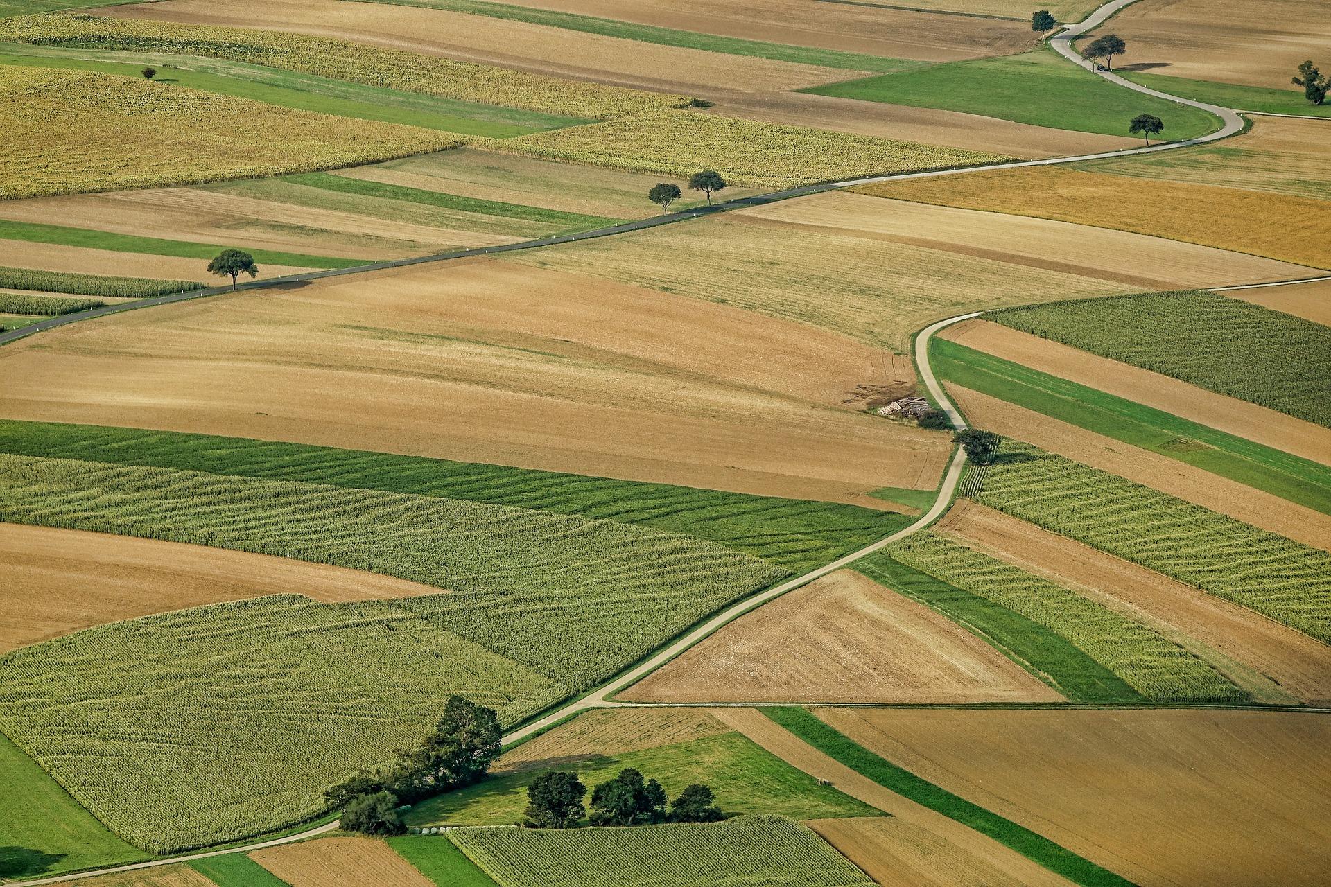 стоимость 1 сотки земли в московской области